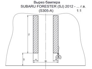 S305-A, Лидер-Плюс (Россия)